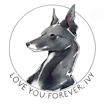 R.I.P. Ivy the Greyhound [+VIDEO] by Singarl