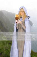 Saint Brighid of Kildare by RowanLewgalon