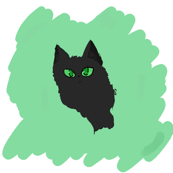 Unnamed Cat by SheepyWool