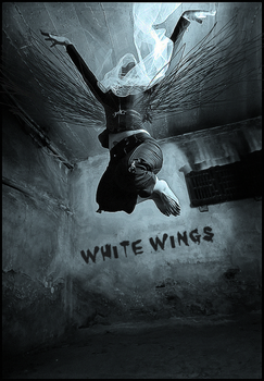 White Wings by flx-ww