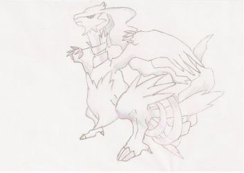 Reshiram by kirbysuperstar97