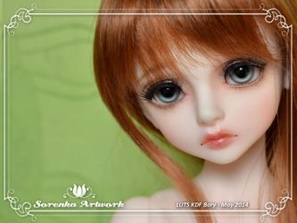 05.2014 LUTS Bory by SorenkaArtwork