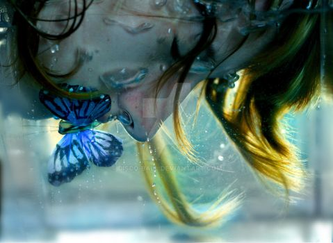 Butterfly Effect by disco-ball