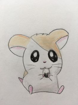 Hamtaro by CaptainEdwardTeague