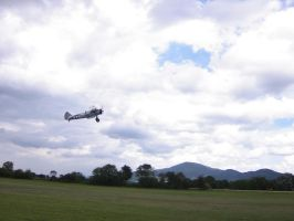 Boing-Stearman PT-17 (Picture 2) by hippo2