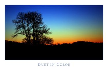 Duet in Color by Mashuto