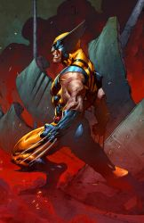 The Wolverine by Summerset