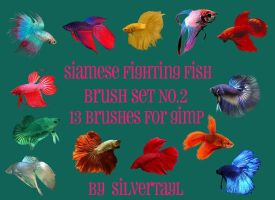Siamese Fighting Fish Set No.2 by Silvertayl