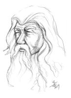 Gandalf Fun Sketch by bonbon3272