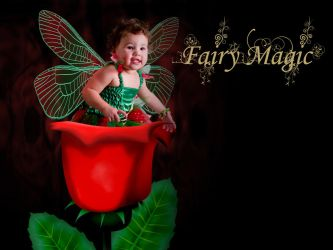 Rose Fairy by BFG