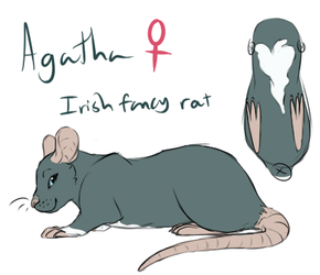 Agatha Reference by Amiookamiwolf