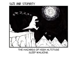 Size and Stupidity. Sleepwalk by Size-And-Stupidity