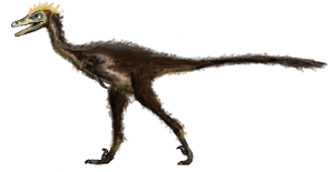 Troodon by Creepy-Stag-Waffle