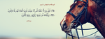 Surat Ya-Seen Ayah 71 and 72 -  FB Cover by LMA-Design