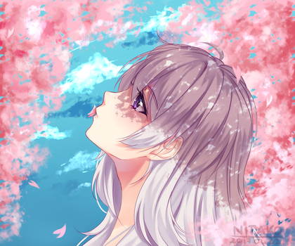 Cherry Blossoms by Nitako