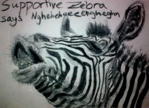 Supportive Zebra Commission by Half--the--Fun