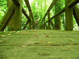 Wooden Bridge by gamer684
