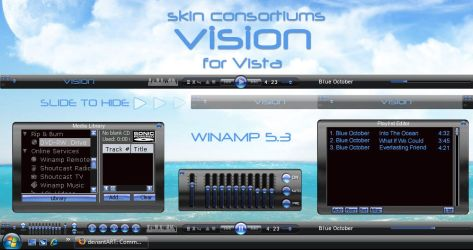 Vision by Skin-Consortium