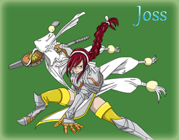 Erza in Lightning armor by Joss96