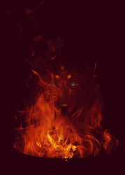 Prophecy of Fire by Jacquotte
