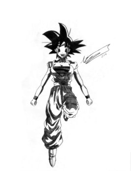DBZ Drawing Attempts: The other gender by Nicknack13