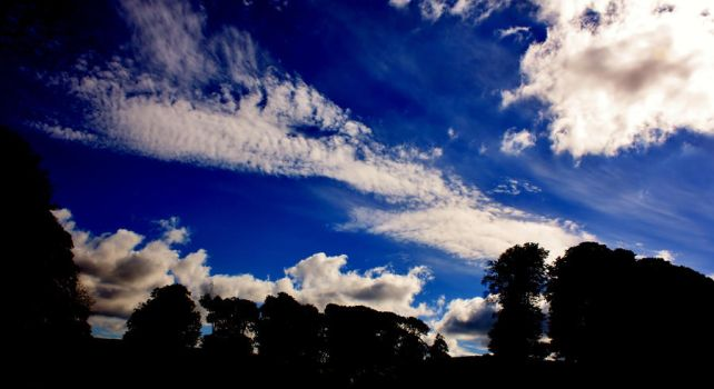 Blue Sky by Eagle-Photography