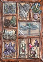 Curiosity Cabinets ATC Nature Shadowbox by emmadreamstar