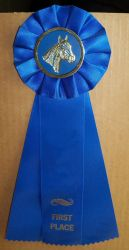 Horse Show Ribbon 1st  Stock by Lovely-DreamCatcher
