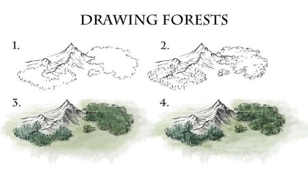 How to Draw Forests by torstan