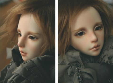 Dollspirit Hoya by RE-main