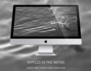 Ripples in the Water by Peleber