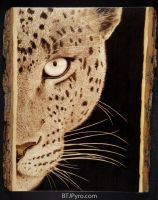 Leopard - woodburning by brandojones