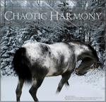 chaotic harmony by ONYX-BABE