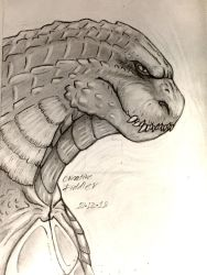 King of the Monsters - Godzilla 2014 by CreativeFiddler