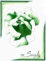 Green Rose by Saraty