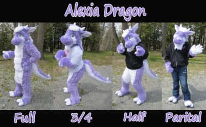 drgnalexia fursuit layout by DrgnAlexia