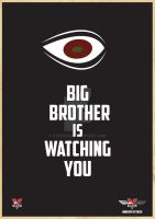 Big Brother Is Watching You by stevie52
