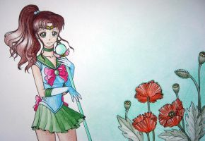 Sailor Jupiter by Lenter