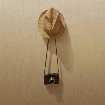 Hat, Camera, Wall by rogue-designer