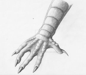 The Claw by Zoroha