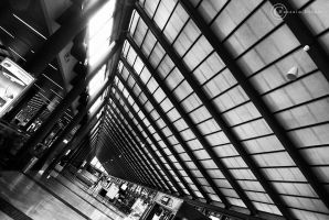 Airport Lines by Lious