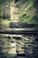 I  simply like stairs by Shreever