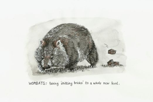 Inktober 2017 Day 15: Wombat by small-light