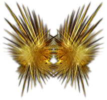 Feathery Fractal-Object Stock by shd-stock