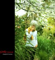 Ginko by qcamera