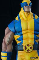 [Garage kit painting #05] Wolverine statue - 029 by DasArt