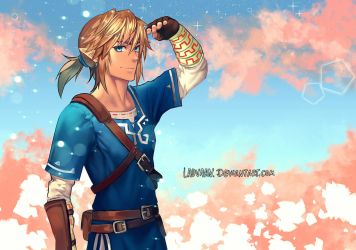 Breath Of The Wild Link - Painted Cosplay by Laovaan