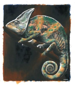 chameleon by bwcopy