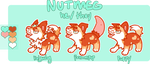 nutmeg puppy ref by irlnya