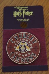 Chudley Cannons Pin by Prue126